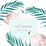 Tropicalpalm leaves whith flamingo card template. Card template with pink flamingo, rose, fern greenery exotic tropical jungle royal palm tree leaves branch Stock Photography