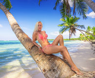Blonde woman lying on the palm trunk. Ocean. Beautiful blonde at Dominican Republic Shore stock photography