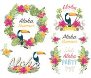 Tropicana Aloha Floral Collections Royalty-vrije Stock Afbeelding