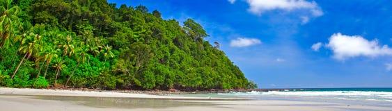 Tropici panoramici Fotografie Stock