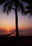 Tropicl havssolnedgång Royaltyfri Bild