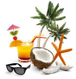 Tropicl summer Stock Images