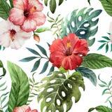 Tropicpattern5 Royaltyfria Bilder