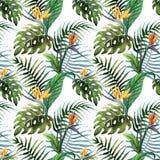 Tropicpattern2 Arkivbilder