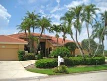 tropics дома большие Стоковое Изображение