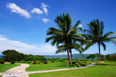 tropics стоковая фотография