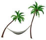 The Tropics Royalty Free Stock Image