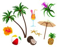 The Tropics Royalty Free Stock Photo
