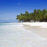 tropics στοκ εικόνες