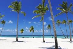 tropics στοκ φωτογραφία