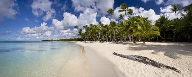tropics foto de stock
