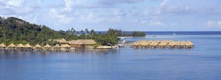 tropics στοκ φωτογραφίες με δικαίωμα ελεύθερης χρήσης