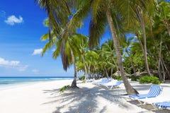 Tropics Stock Photography