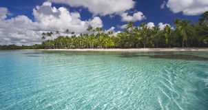 Tropics Royalty Free Stock Photography