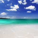 Tropics. Beach on the tropical island. Clear blue water, sand and palm trees. Beautiful vacation spot, treatment and aquatics stock image