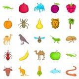 Tropics icons set, cartoon style Royalty Free Stock Images