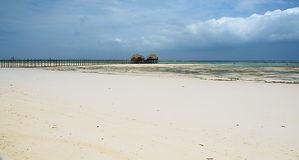 Tropics - low tide. Zanzibar - Tropical weather with low tide - Indian Ocean Royalty Free Stock Images