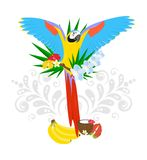 Tropics and the parrot Royalty Free Stock Photos