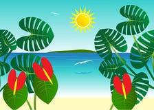 Tropics. Royalty Free Stock Photography