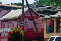 Tropikalna cukierniana scena kłaść z powrotem & colourful, Obrazy Royalty Free