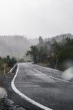 Tropikalna dżdżysta droga fotografia royalty free