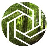 Tropikalna dżungli ilustracja z geometryczną postacią fotografia royalty free