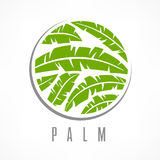 Tropikalna drzewko palmowe emblemata zieleń Obraz Stock