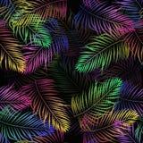 Tropikalna flanca opuszcza palmf neonowych kwiaty ilustracja wektor