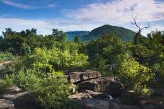 Tropikalna góra Fotografia Royalty Free