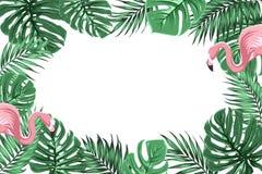 Tropikalna granicy rama z dżunglą opuszcza flamingi Zdjęcie Royalty Free
