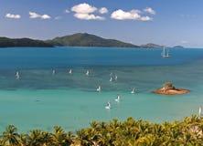 Tropikalna Hamilton wyspy scena Fotografia Stock