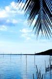 Tropikalna jezioro strona Zdjęcia Stock