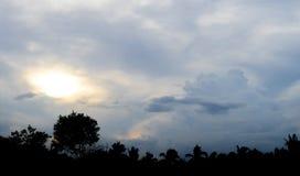 Tropikalna kokosowego drzewa sylwetka z dramatycznym nieba tłem Zdjęcia Royalty Free