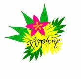 Tropikalna kwiat ilustracja z kaligrafii inskrypcją tropikalną ilustracja wektor