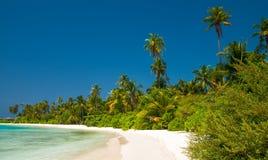 Tropikalna linia brzegowa zdjęcia stock
