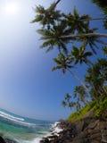 Tropikalna linia brzegowa Zdjęcie Royalty Free