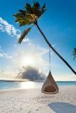 Tropikalna Maldives plaża z palmą i huśtawką Fotografia Royalty Free