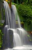 Tropikalna ogrodowa siklawa Fotografia Stock