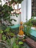 Tropikalna Ogrodowa statua kota sztuka Kocia Obraz Royalty Free