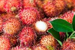 Tropikalna owoc Obrazy Royalty Free