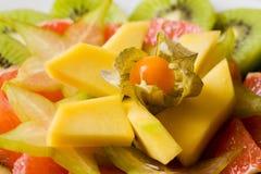 tropikalna owocowa sałatka zdjęcie stock