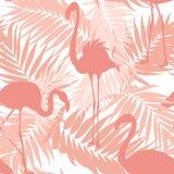 Tropikalna palma opuszcza egzotycznym flamingów ptakom menchie Obrazy Stock