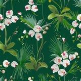 Tropikalna palma Opuszcza i orchidea Kwitnie tło bezszwowy wzoru royalty ilustracja