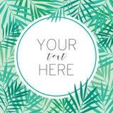 Tropikalna palma opuszcza tło szablon Obrazy Royalty Free