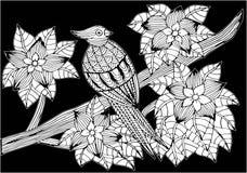Tropikalna papuga, kwiaty i liście, Strona kolorystyki książka dla dorosłych i dzieci, sztuki terapia Konturu rysunek, doodles ilustracja wektor