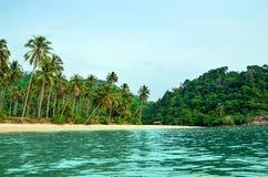 Tropikalna piaskowata plaża z drzewkami palmowymi i tropikalną lasową strzelaniną od morza Tajlandia, Koh Chang wyspa fotografia stock