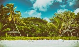 Tropikalna plaża i drzewa przeciw pięknemu niebieskiemu niebu Wakacyjny przeciw Zdjęcie Royalty Free
