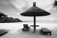Tropikalna plaża w czarny i biały Zdjęcia Stock