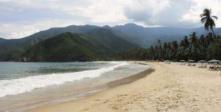 Tropikalna plaża w Wenezuela obraz stock