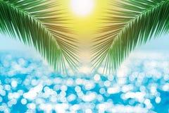 Tropikalna plaża z denną gwiazdą na piasku, wakacje letni tło Podróżuje i wyrzucać na brzeg urlopową, bezpłatną przestrzeń dla te obraz royalty free